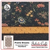 Prairie Dreams - 3 Yard Quilt Kit